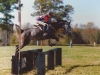 horse-jumping