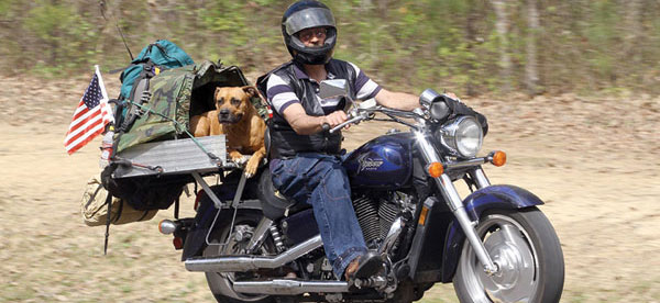 mototcycle-riding-dog-discover
