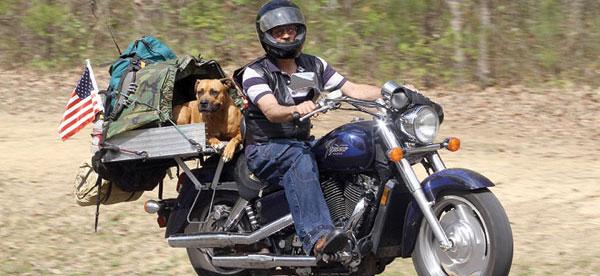 mototcycle-riding-dog-discover.jpg