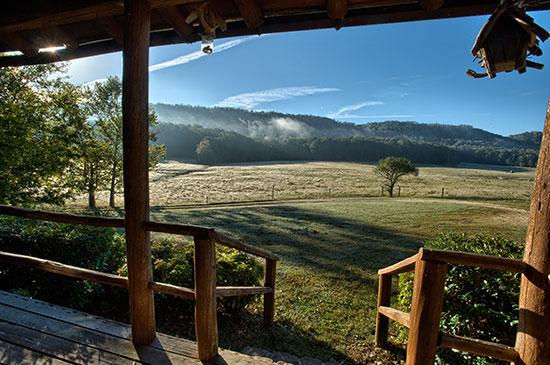 faulkner-farm-view