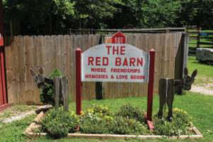 red-barn-st-clair-horse-therapy-3